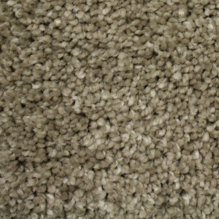 Shop phenix cornerstone dolomite glossy taupe textured for Taupe color carpet
