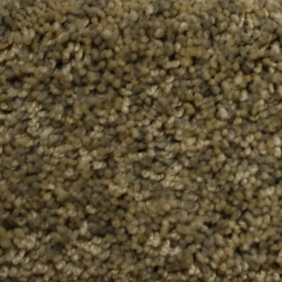 STAINMASTER Petprotect Lexington Backcountry Textured Interior Carpet