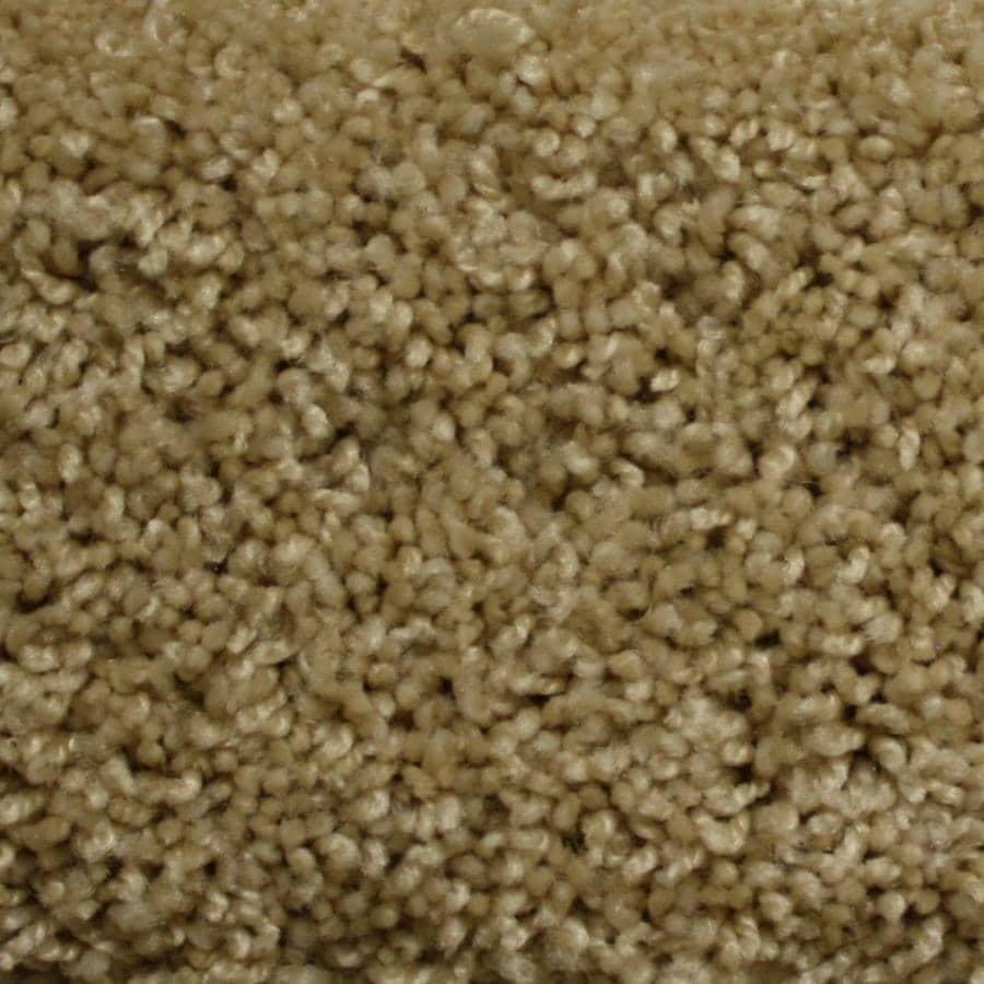 STAINMASTER PetProtect Lexington Reflection Textured Interior Carpet
