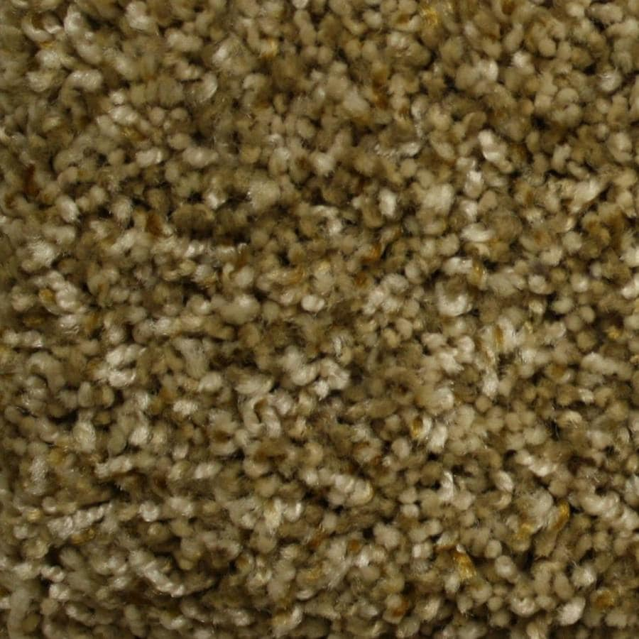 STAINMASTER PetProtect Lexington 12-ft W x Cut-to-Length Living History Textured Interior Carpet
