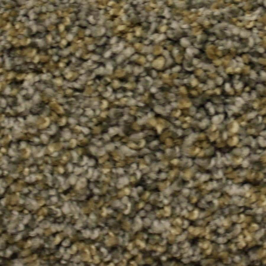 STAINMASTER PetProtect Lexington Terrain Park Textured Indoor Carpet