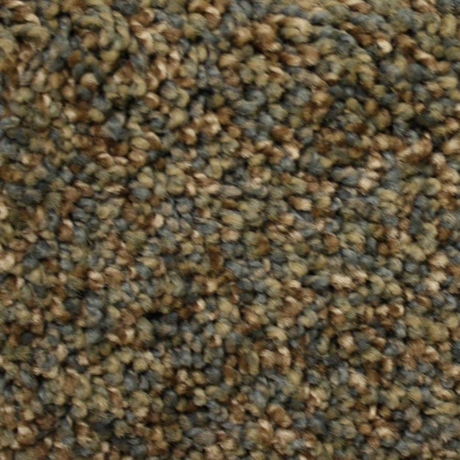 Stainmaster Petprotect Lexington 12 Ft Textured Interior Carpet
