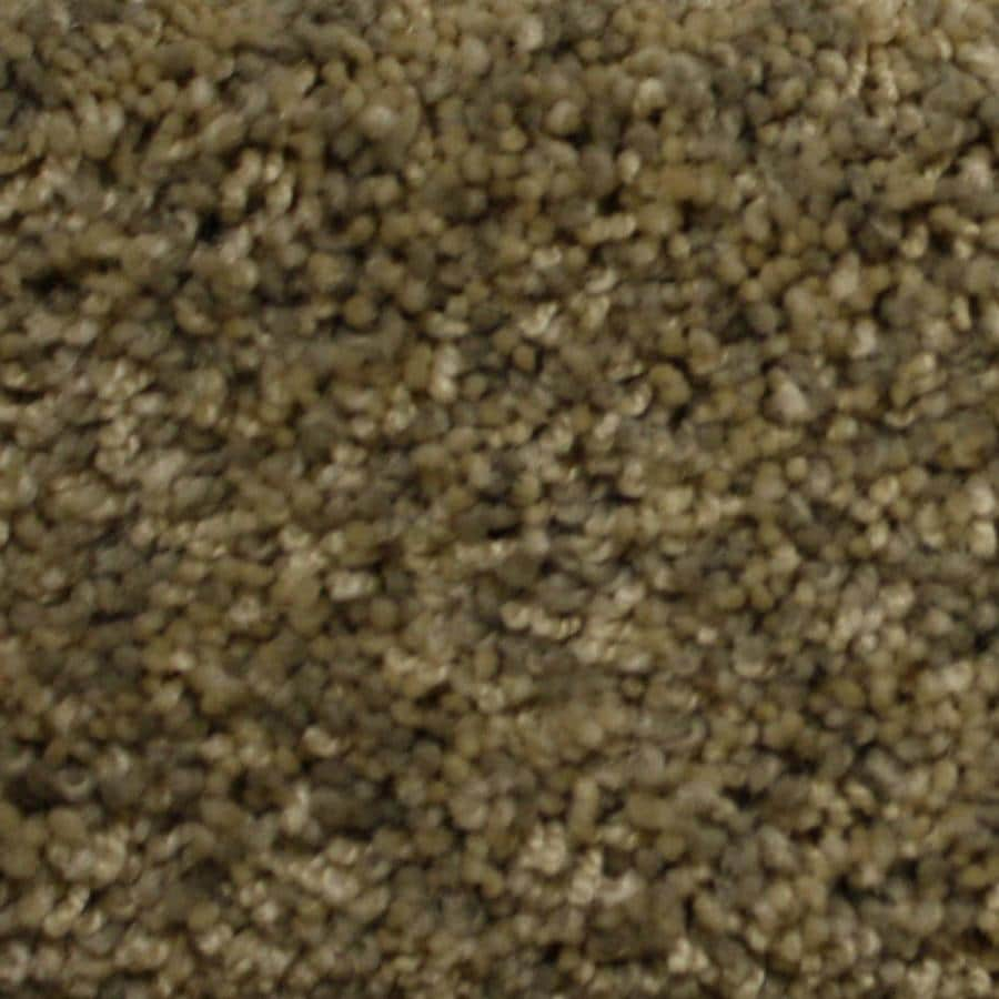STAINMASTER PetProtect Georgetown Backcountry Textured Indoor Carpet