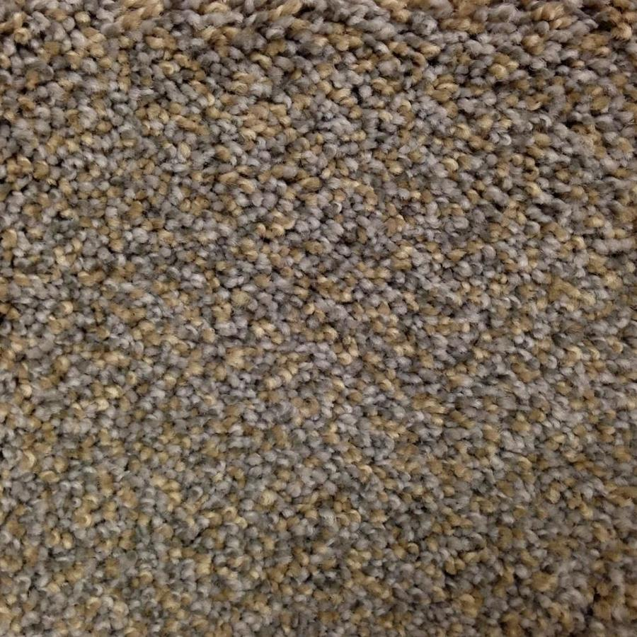 STAINMASTER PetProtect Georgetown 12-ft W x Cut-to-Length Terrain Park Textured Interior Carpet