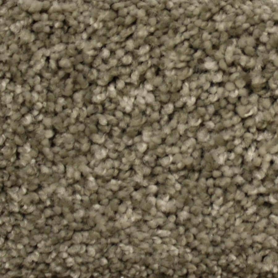 STAINMASTER PetProtect Georgetown 12-ft W x Cut-to-Length Millspring Textured Interior Carpet