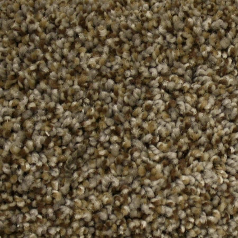 STAINMASTER PetProtect Georgetown Top Elevation Textured Interior Carpet