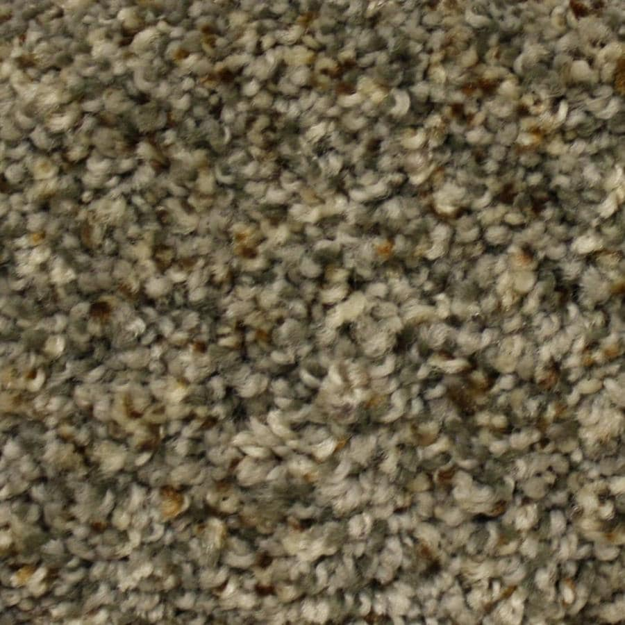 STAINMASTER PetProtect Georgetown First Launch Textured Indoor Carpet