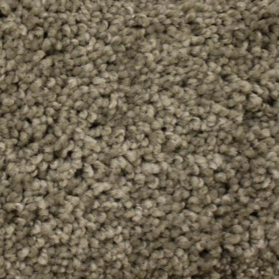 STAINMASTER PetProtect Georgetown Canyon Road Textured Interior Carpet