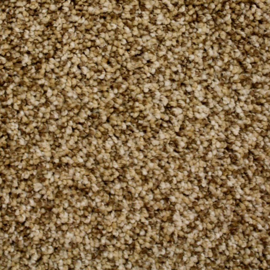 Shop Carpet at Lowes.com