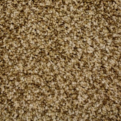 Petprotect Nitro 12 Ft Textured Interior Carpet
