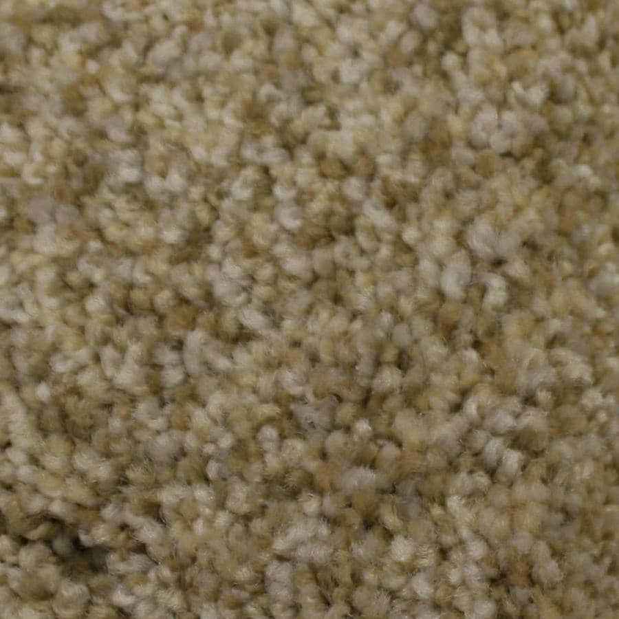 STAINMASTER PetProtect Side Kick Admiration Textured Interior Carpet