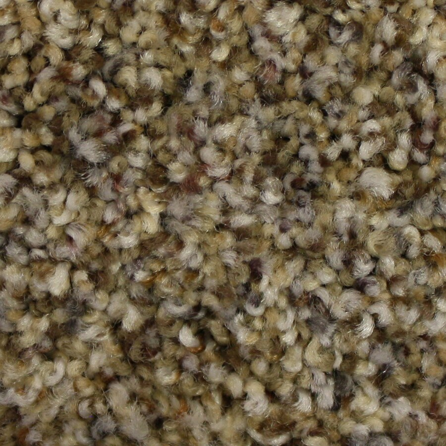 STAINMASTER PetProtect Companion Untouchable Textured Interior Carpet