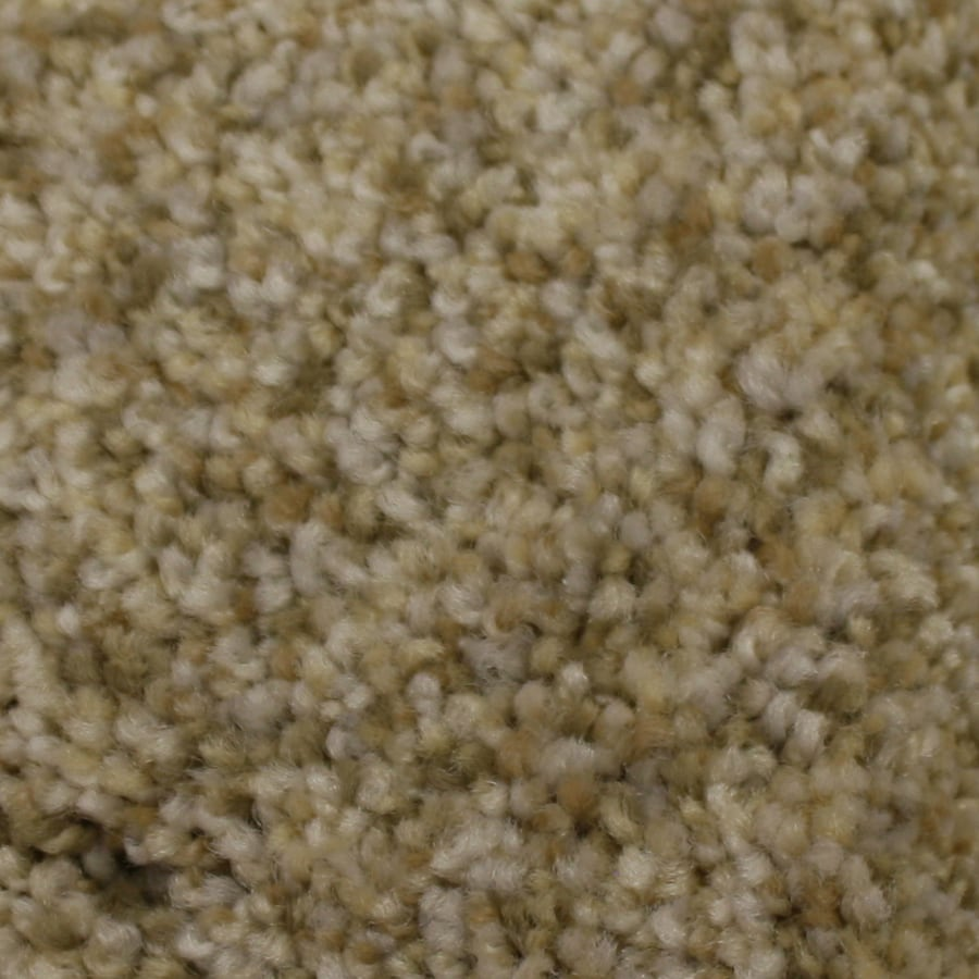 STAINMASTER PetProtect Kindred Spirit 12-ft W x Cut-to-Length Admiration Textured Interior Carpet