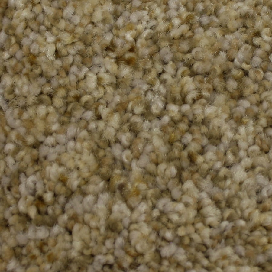 STAINMASTER PetProtect Kindred Spirit Loyalty Textured Indoor Carpet