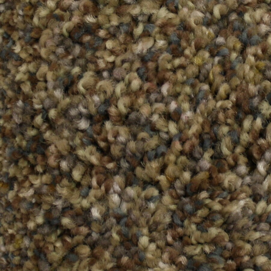 STAINMASTER PetProtect Kindred Spirit Friendship Textured Indoor Carpet