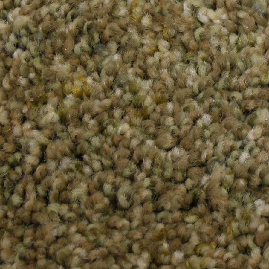 STAINMASTER PetProtect Soul Mate Musketeer Textured Indoor Carpet