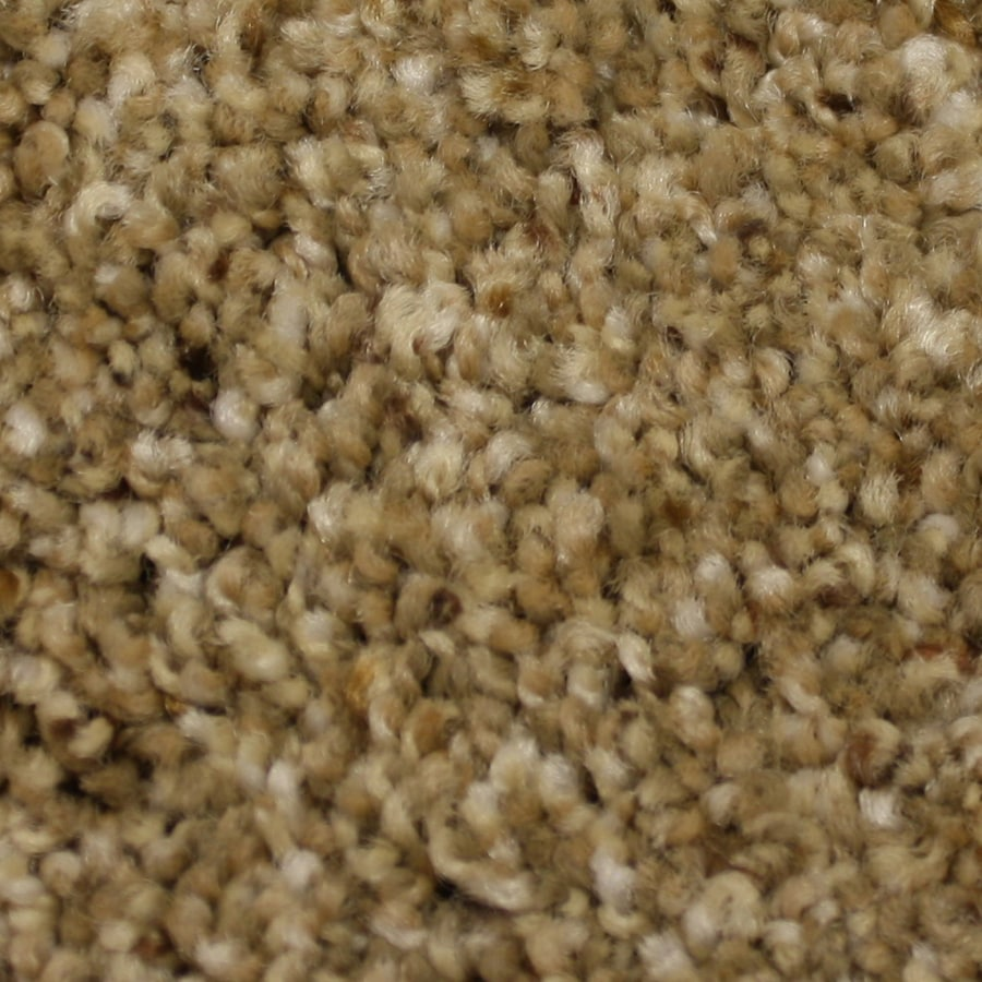 STAINMASTER PetProtect Soul Mate 12-ft W x Cut-to-Length Reliable Textured Interior Carpet