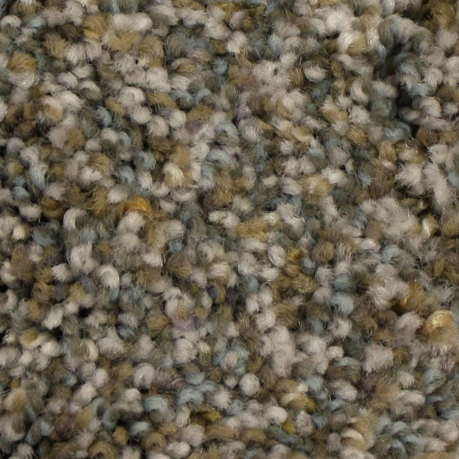 Shop STAINMASTER PetProtect Soul Mate 12-ft W Forever Yours Textured Interior Carpet at Lowes.com