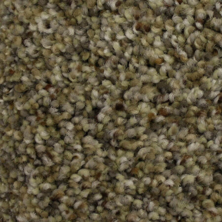 STAINMASTER PetProtect Soul Mate Mentor Textured Interior Carpet