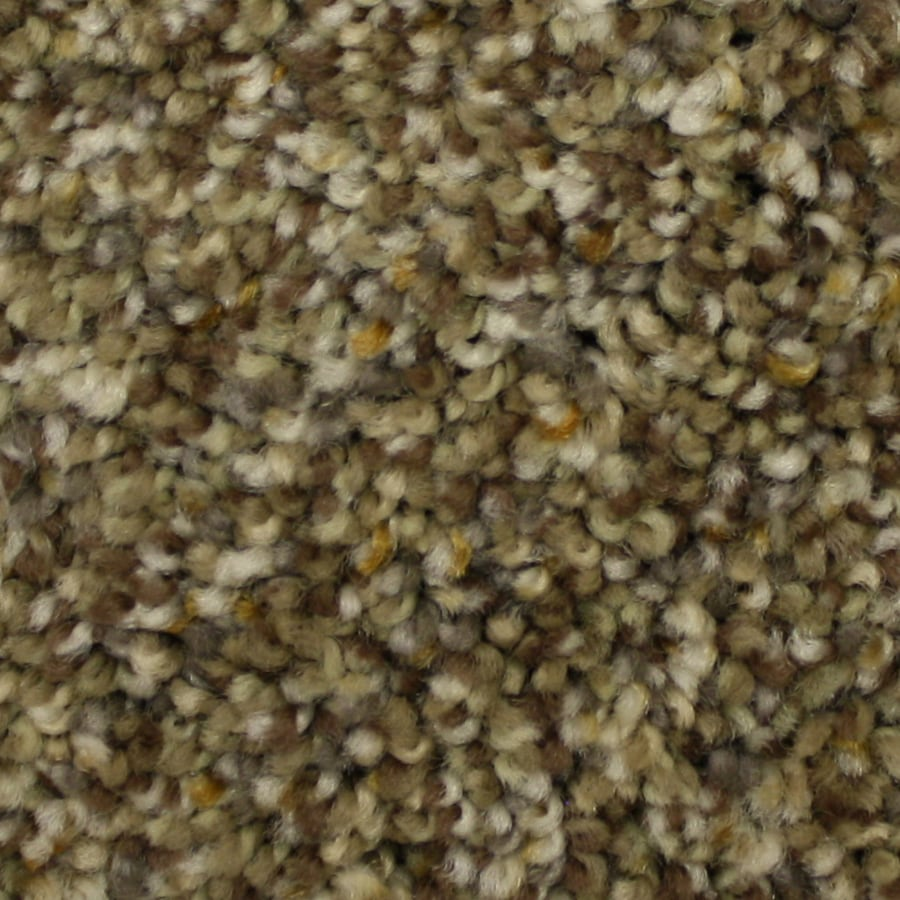 STAINMASTER Petprotect Soul Mate Lasting Impression Textured Interior Carpet