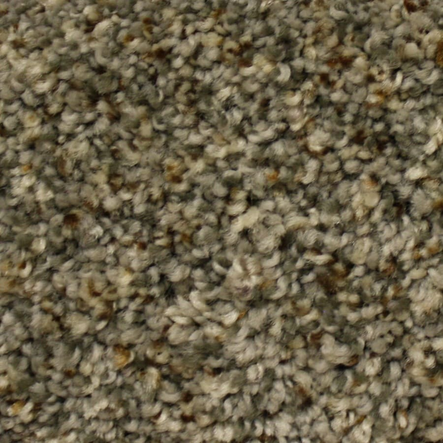 STAINMASTER PetProtect Georgetown Express First Launch Textured Indoor Carpet