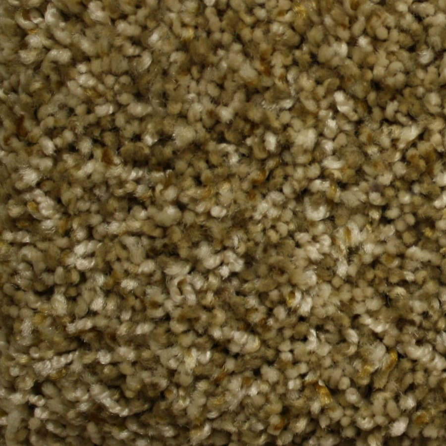 STAINMASTER PetProtect Lexington Express Living History Textured Interior Carpet