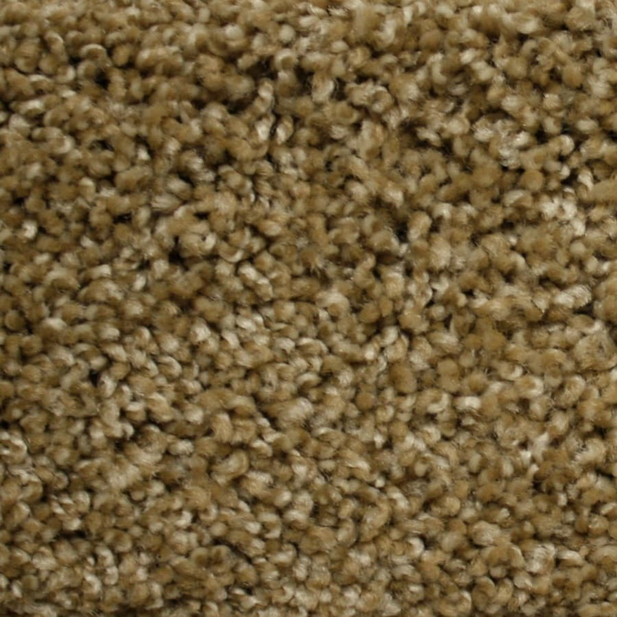 STAINMASTER PetProtect Lexington Express World Class Textured Indoor Carpet