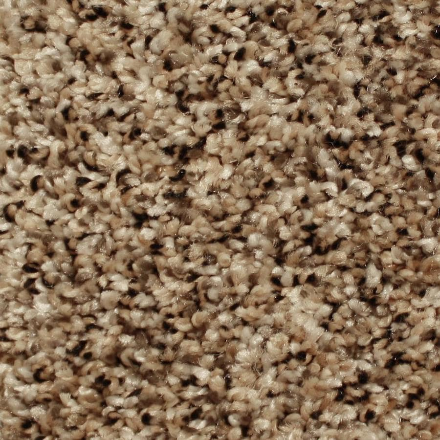 STAINMASTER Essentials Sonora 12-ft W x Cut-to-Length Coast Classic Textured Interior Carpet