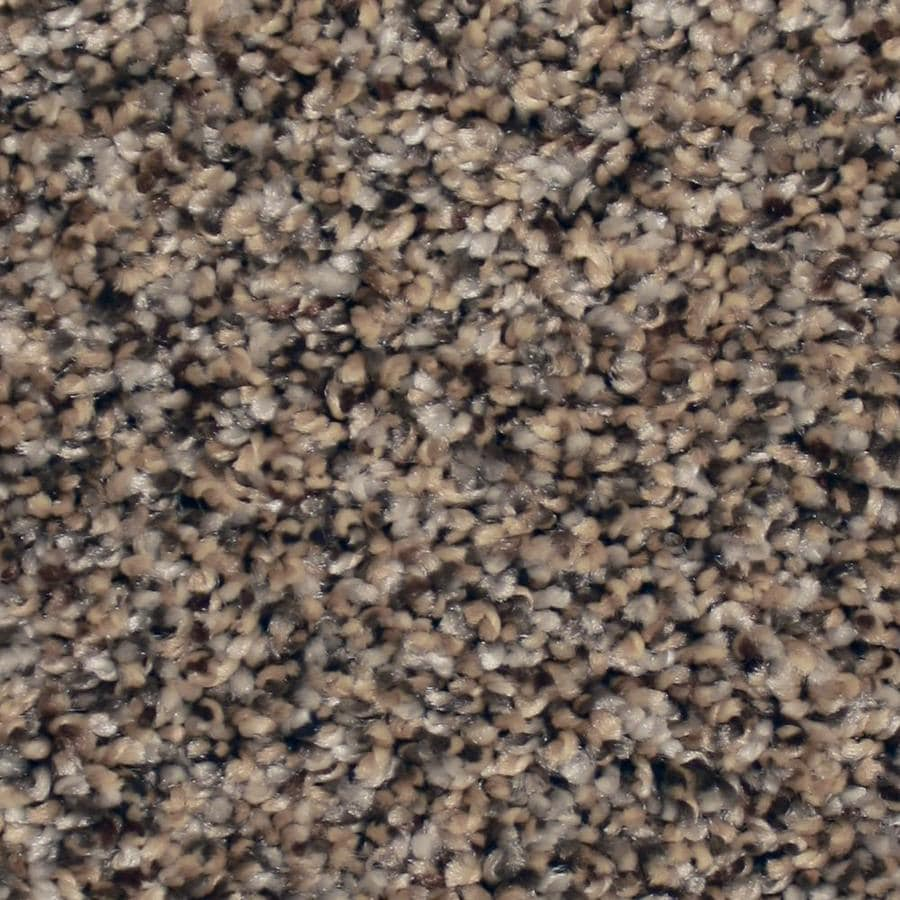 STAINMASTER Essentials Channing 12-ft W x Cut-to-Length Lazy Stroll Textured Interior Carpet