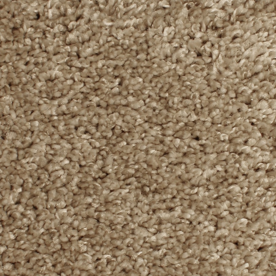 Phenix Cornerstone Mill Cove 12-ft W x Cut-to-Length Trending Textured Interior Carpet