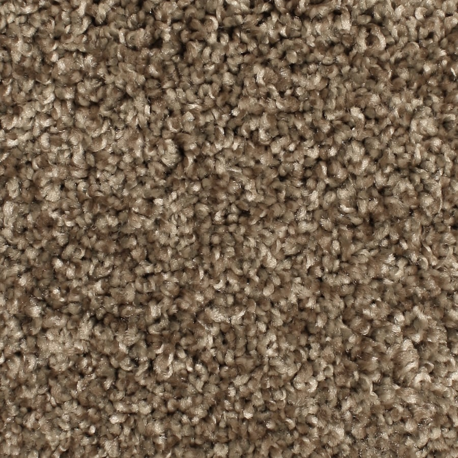 Phenix Mill Cove Hazen Trail Textured Indoor Carpet