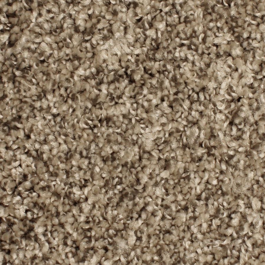 Phenix Cornerstone Springhaven 12-ft W x Cut-to-Length Outerbanks Textured Interior Carpet