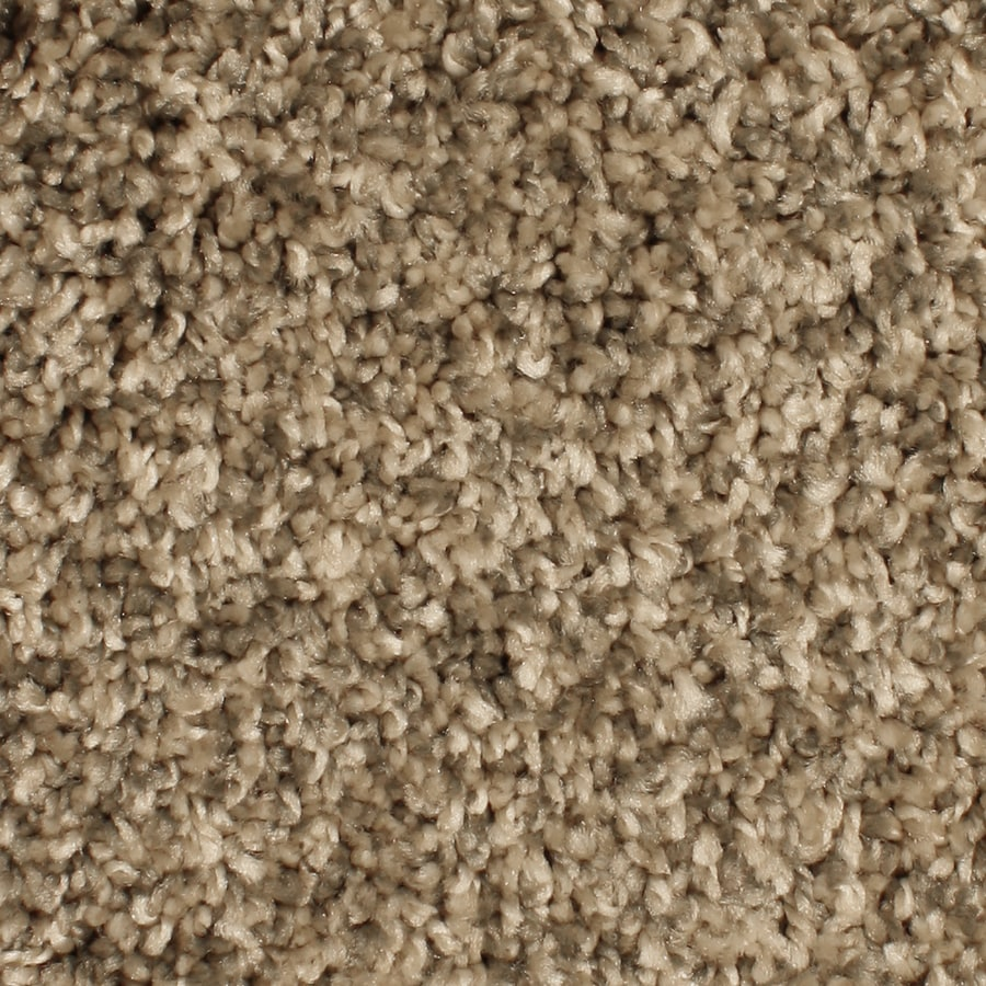 Phenix Springhaven Serene Retreat Textured Indoor Carpet