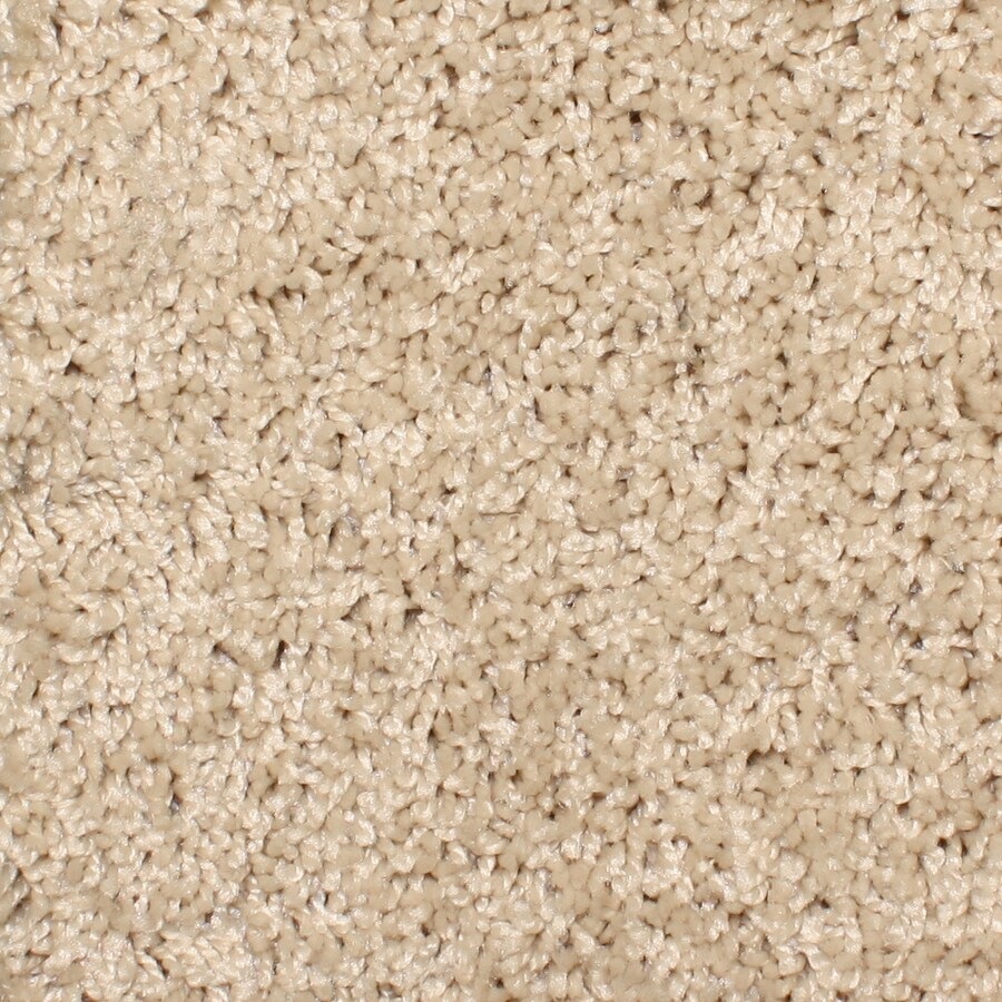 STAINMASTER Essentials Bronson Sand Trap Textured Indoor Carpet