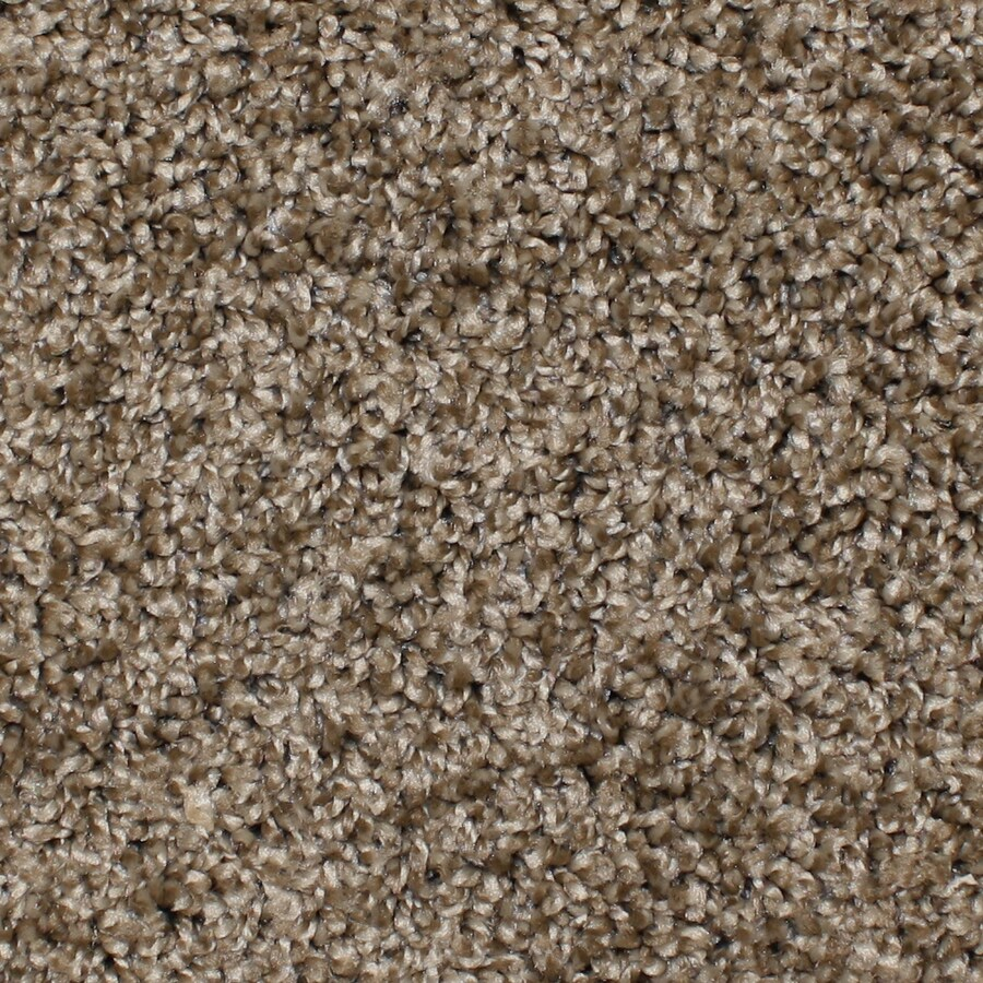 STAINMASTER Essentials Bronson Desert Wildlife Textured Indoor Carpet