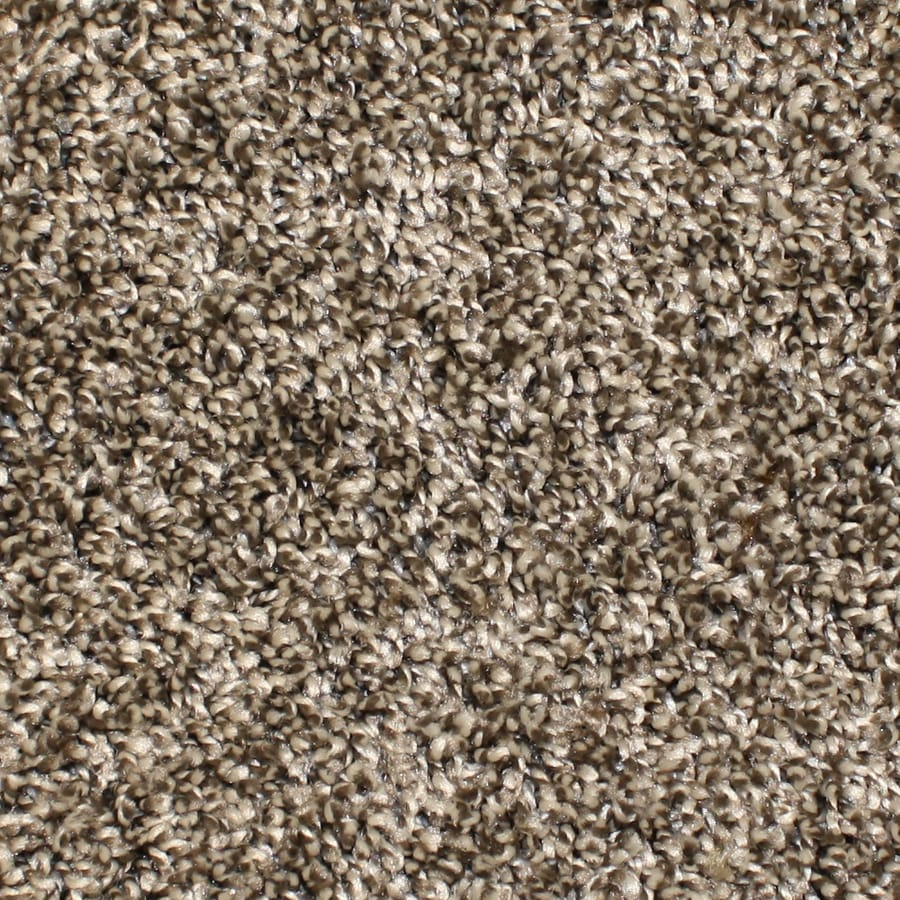 STAINMASTER Essentials Bronson Playtime Textured Interior Carpet