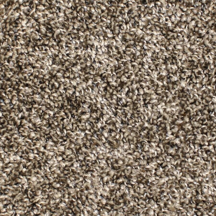 Stainmaster Essentials Bronson 12 Ft Textured Interior Carpet