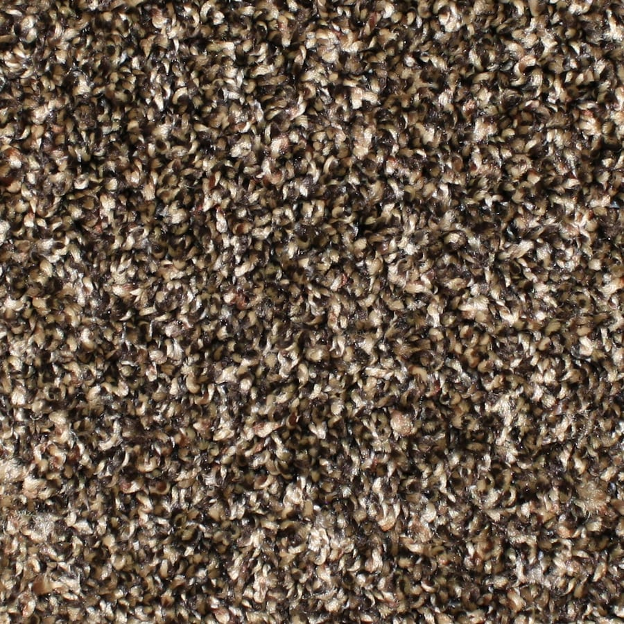 STAINMASTER Essentials Bronson Scenic Beauty Textured Interior Carpet