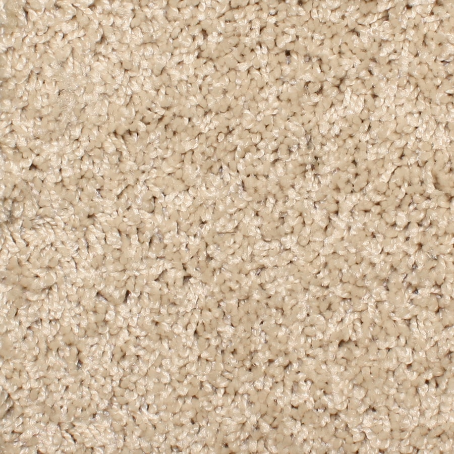STAINMASTER Essentials Conway 12-ft W x Cut-to-Length Sand Trap Textured Interior Carpet