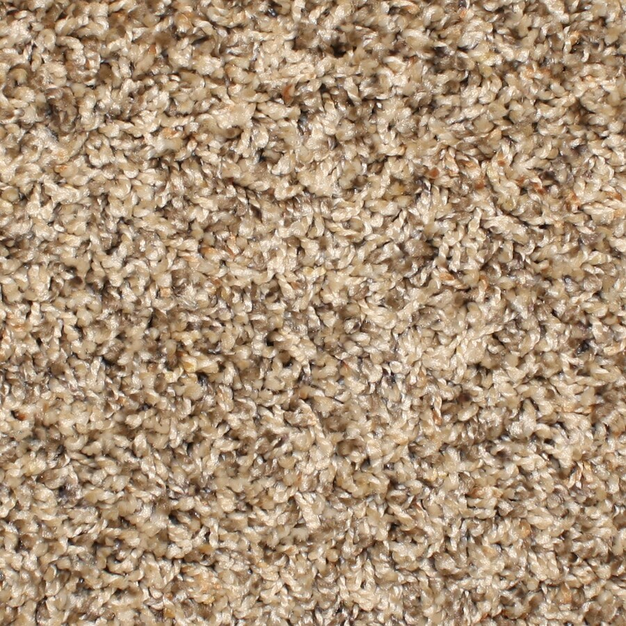 STAINMASTER Essentials Durand Rave Review Textured Interior Carpet