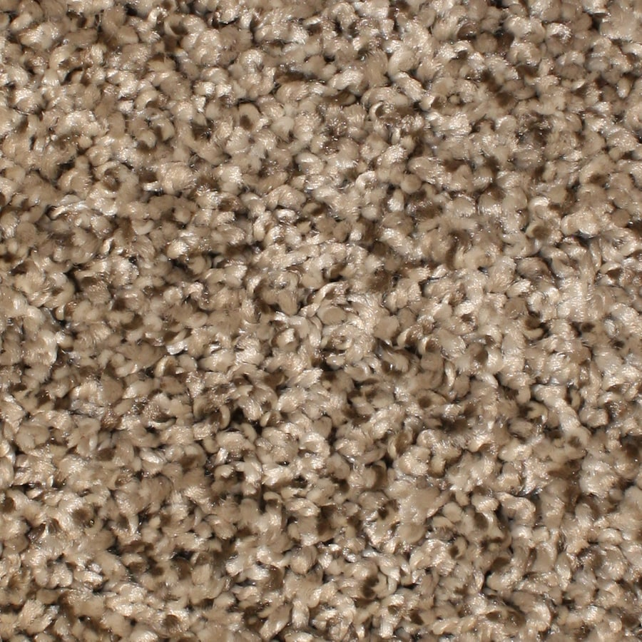 STAINMASTER Essentials Gaucho Gaucho Textured Interior Carpet