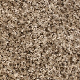 Stainmaster Carpet At Lowes