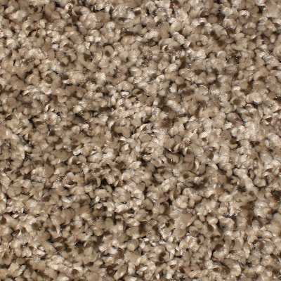 Essentials Notorious Gaucho 12 Ft Textured Interior Carpet