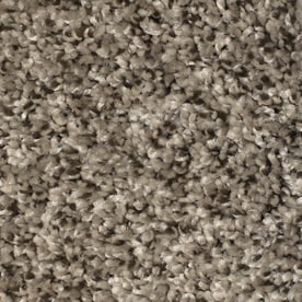 STAINMASTER Essentials Notorious Gaucho 12-ft Textured Interior Carpet