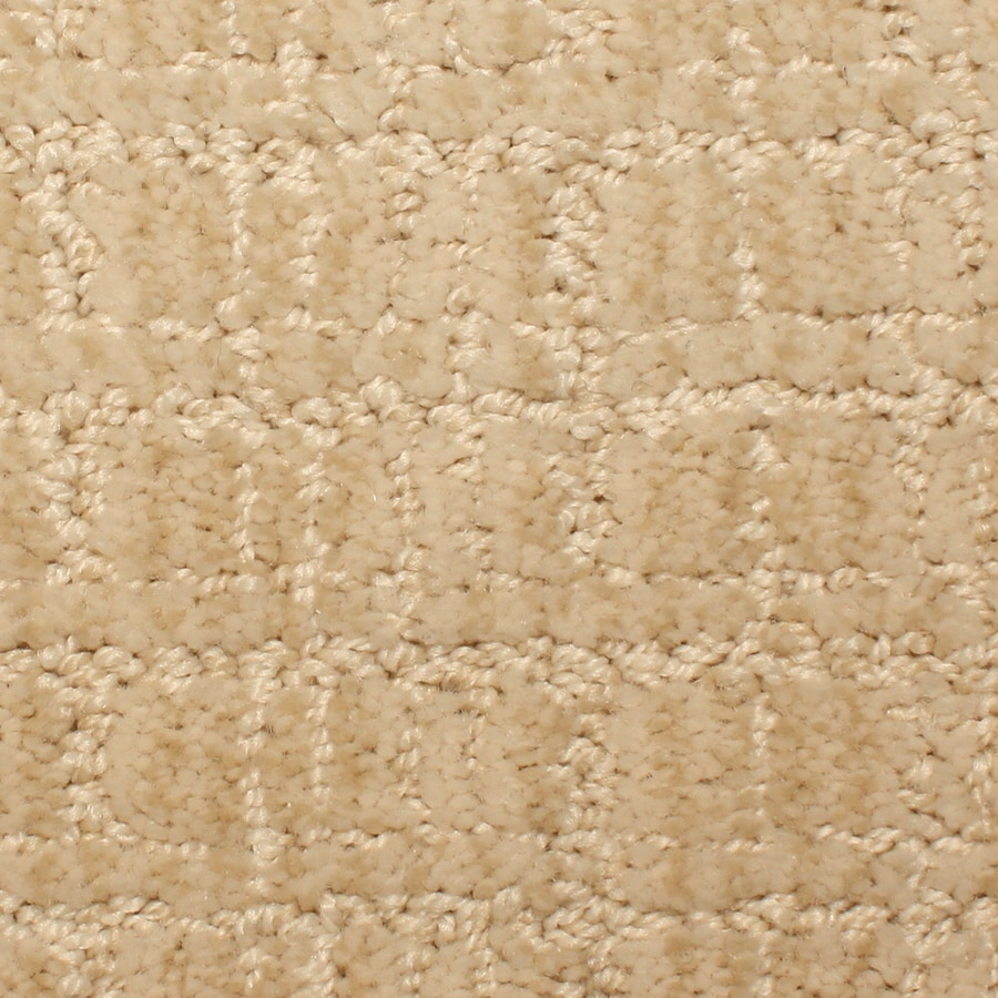 STAINMASTER PetProtect Park Lane Striking Pattern Interior Carpet