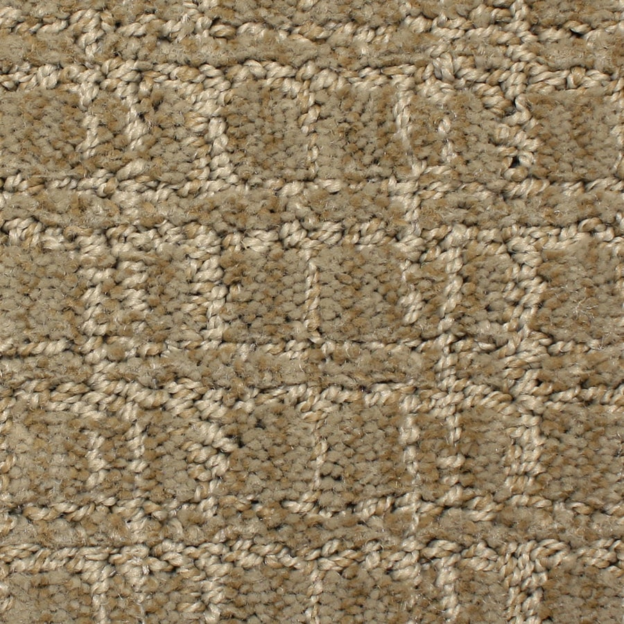 STAINMASTER PetProtect Park Lane Decorative Pattern Interior Carpet