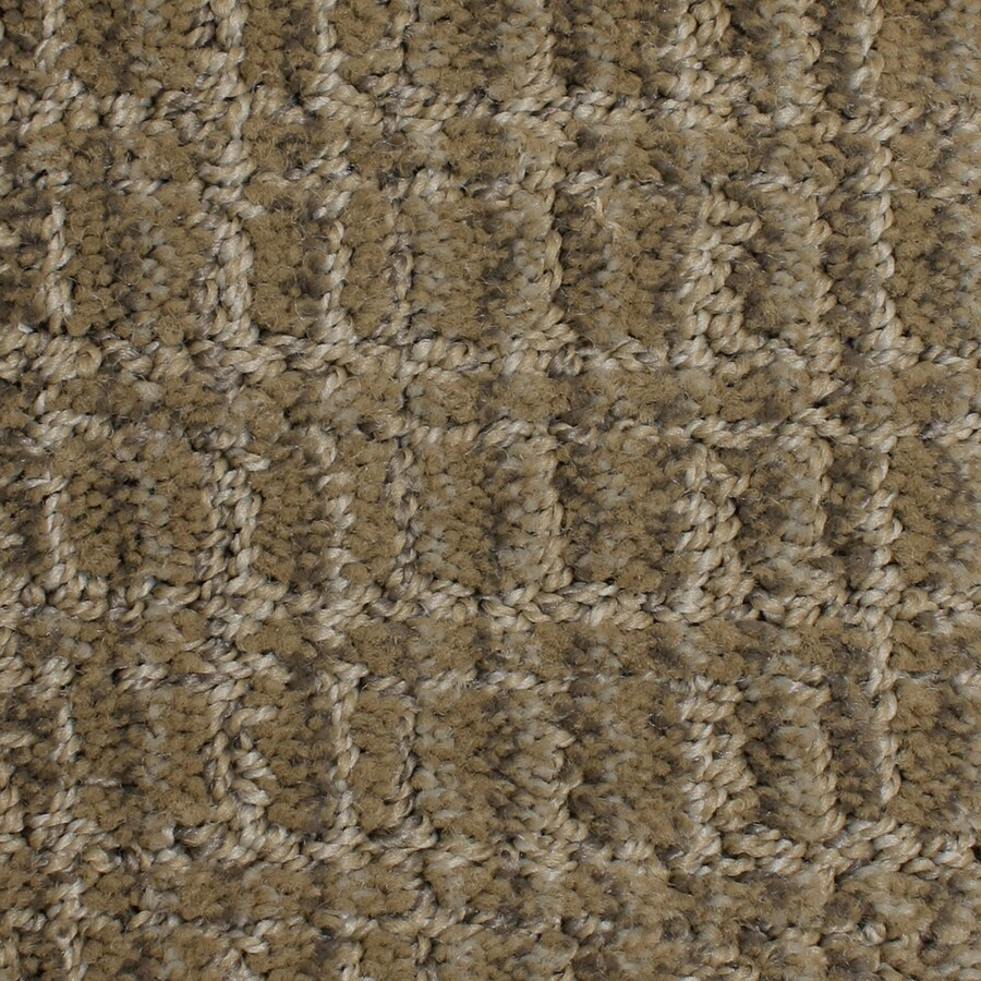 STAINMASTER PetProtect Park Lane 12-ft W x Cut-to-Length Modernistic Pattern Interior Carpet