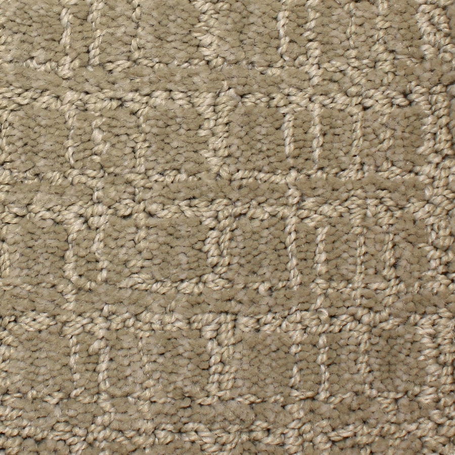 STAINMASTER PetProtect Park Lane 12-ft W x Cut-to-Length High style Pattern Interior Carpet