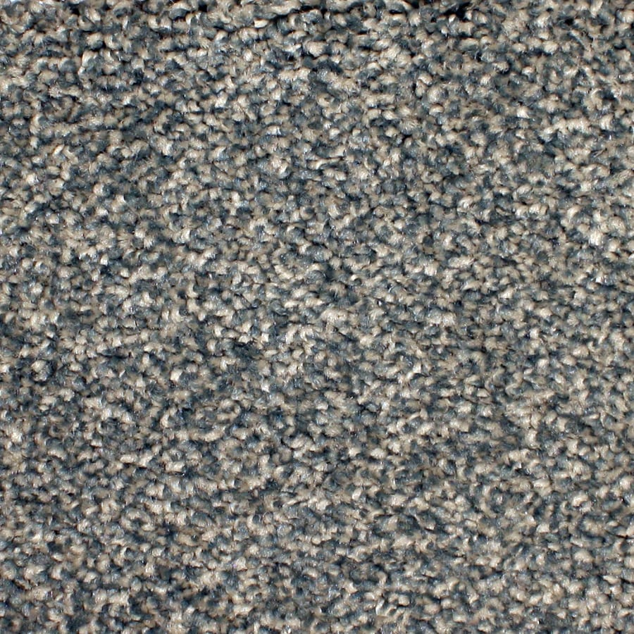 STAINMASTER Petprotect Briarcliffe Hills 12-ft W x Cut-To-Length Applique Textured Interior Carpet