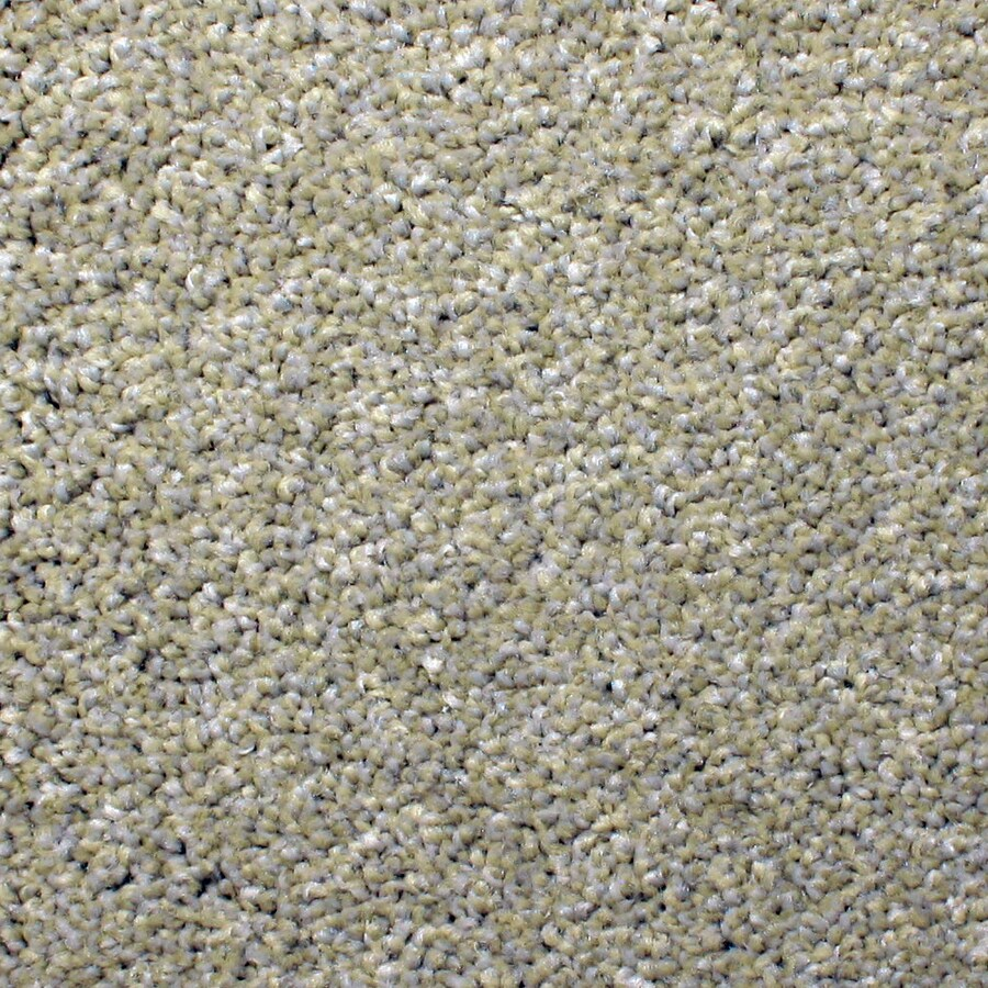 STAINMASTER PetProtect Briarcliffe Hills 12-ft W x Cut-to-Length Artsy Textured Interior Carpet